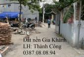 Cần bán gấp lô đất thổ cư 30m MT 3.8m, đất vuông vắn, ngõ ô tô vào tận đất tại Đức Giang, Long Biên