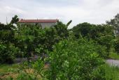 Chính chủ Bán đất tại khu C5 Xã Tiên Dược, Sóc Sơn, Hà Nội diện tích 1100m2 giá 3.2 Tỷ