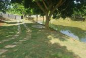 Cần bán gấp trang trại 3500m2 đất thổ cư có khuôn viên hoàn thiện tại Hòa Sơn, Lương Sơn, Hòa Bình