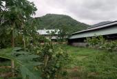 Cần bán gấp trang trại, khu nghỉ dưỡng diện tích 2,4ha thuộc xã Tóc Tiên, TX Phú Mỹ, BRVT