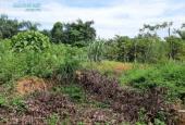 Thanh lý gấp 781m2 đất thổ cư chỉ với 1 tỷ, Xã Nhuận Trạch, Huyện Lương Sơn, Hòa Bình.