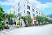 Nhà vườn Pandora Thanh Xuân giảm giá sâu để bán nhanh trong tháng, cho thuê ngay 70 tr / tháng
