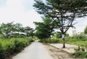 Các nền đất giá rẻ cần bán tại dự án ĐH Bách Khoa, phường Phú Hữu, quận 9, TP HCM
