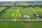 Bán đất tại Xã Bảy Ngàn, Châu Thành A, Hậu Giang diện tích 800m2, giá 880 triệu