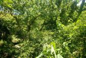 Chuyển nhượng 8000 m2 vườn thổ cư tại xã Dân Hạ, Huyện Kỳ Sơn, Tỉnh Hòa Bình