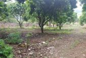 Chính chủ cần bán 7500m2 đất cạnh sân Gold Skailex, tại Lương Sơn, Hòa Bình.