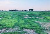 Bán Đất Đường Nhựa Hàm Liêm 1000m2 Giá: 1tr/m2