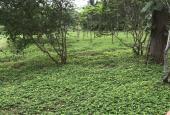 Cần bán lô đất Flamingo Đại Lải, khu biệt thự Hoàng Oanh, 301m2, giá 22tr/m2, lh 0962.573.196
