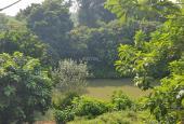 Chính chủ cần sang nhượng gấp 5080m2 đất, tại Xã Liên Sơn, Lương Sơn, Hòa Bình.