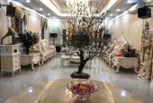 Bán Biệt thự chính chủ KĐT Trung Yên- Cầu Giấy - Hà Nội, dt sổ đỏ 220m2,  giá 42,5 tỷ. Lh