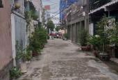 Biệt thự hẻm xe hơi Nguyễn Huy Tưởng khu vip nhất quận Bình Thạnh, giá 17.2 tỷ