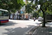 Bán nhà phố Trúc Khê, Phường Láng Hạ, Đống Đa, DT 66m2, ngõ ô tô. LH: 0868384961