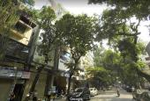 Duy nhất 1 căn! Bán nhà mặt phố Trần Xuân Soạn, Hai Bà Trưng, 60m2, 8 tầng, giá chỉ 30 tỷ