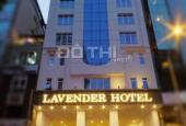 Cho thuê khách sạn mặt tiền Nguyễn Thái Bình, 12x20m, hầm, 9 tầng, gồm 70p, 450 tr/th, 0918577188