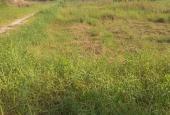 Bán đất đường Tam Đa, phường Trường Thạnh, Quận 9 diện tích 3000 mét vuông