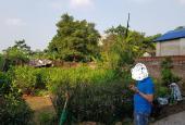 Chính chủ cần bán lô đất VỊ TRÍ ĐẸP, GIÁ RẺ tại huyện Đông Anh, TP Hà Nội.