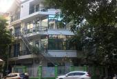 Cho thuê nhà mặt phố Phan Kế Bính, 60m2, 7 tầng, mt 4,5m, xây mới. Lh 0965402811