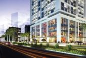 Bán căn hộ chung cư tại dự án Iris Garden, Nam Từ Liêm, Hà Nội, diện tích 132m2, giá 3.4 tỷ