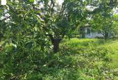 Bán trang trại, khu nghỉ dưỡng tại Xã La Ngà, Định Quán, Đồng Nai