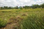 Kẹt tiền cần bán đất thổ cư mặt tiền đường 785 Bourbon,gần trường cấp 3 tân hưng  900tr/1000m2 SHR