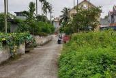 Bán đất xã Lâm Động, Thủy Nguyên, Hải Phòng