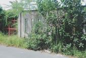 Bán đất khu vực Bình Chánh, mặt tiền Phạm Tấn Mười, chính chủ, DT 330m2, giá 3,05 tỷ, SHR