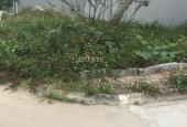 Cần bán nhanh, đất sổ đỏ Chính Kinh, Thanh Xuân, diện tích rộng, 43 triệu/m2