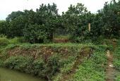 Cơ hội sở hữu ngay 2880m2 đất có ao thả cá, view cánh đồng, tại Hòa Sơn, Lương Sơn, HB