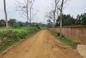 Cần bán 5000m2 đất phù hợp làm homestay, tại Yên Bài, Ba Vì, HN