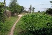 Bán đất giá rẻ đường Thạnh Xuân 52 nối dài xã Đông Thạnh, Hóc Môn, diện tích 2357m2