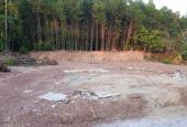 Hot cần bán gấp đất Thanh Hải gần nhà máy nước quảng tế giá rẻ