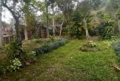 Cơ hội sở hữu 3000m2 đất làm nghỉ dưỡng, tại Lâm Sơn, Lương Sơn, Hòa Bình