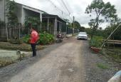 Bán đất mặt tiền đường nhựa xã Phước Hậu, Cần Giuộc, SHR, giá 1.55 tỷ