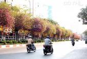 Bán nhà 2 mặt tiền đường Đinh Tiên Hoàng, Quận 1, DT: 6,3x17m 1 lầu. Giá 26,3 tỷ (chính chủ)