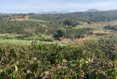Bán lô đất 8000m2 tại Gan thi, Lâm Hà, Lâm Đồng, mr. An 0798.766.777