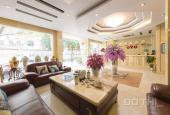 Bán nhà mặt phố Trần Khát Chân trung tâm Hai Bà Trưng, 80m2 7 tầng, MT 5m, cực đẹp, 0971592204