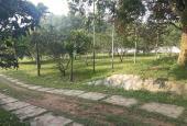 Mảnh đất đã có sẵn khuôn viên 4000m2 ở Lương Sơn giá chỉ 2.x tỷ