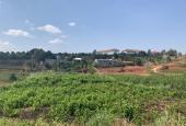 Bán đất tại Đường Tỉnh lộ 725, Xã Gia Lâm, Lâm Hà, Lâm Đồng diện tích 600m2 giá 1 Tỷ