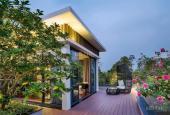 Bán đất nền dự án sinh thái Cẩm Đình Hiệp Thuận, giá rẻ, cơ hội đầu tư lớn