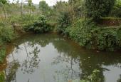 Bán nhà vườn 1900m2 đất có khuôn viên hoàn thiện, phong cách châu Âu, Hòa Sơn Lương Sơn, HB