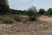 Chính chủ cần bán lô đất trồng cây lâu năm đường Gò Cát, Phú Hữu, Quận 9, DT 5665m2, LH 0914920202