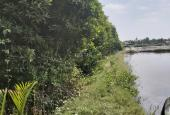 Bán đất nông nghiệp Phước Lại giá 350 tr/1000m2. LH 0777.770.439