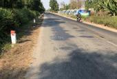 Bán đất tại đường Quốc Lộ N2, xã Thạnh Lợi, Bến Lức, Long An, DT 4000m2, giá 10 tỷ