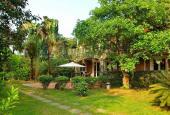 Cơ hội sở hữu ngay 8000m2 đất biệt thự nghỉ dưỡng, tại Nhuận Trạch, Lương Sơn, Hòa Bình