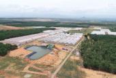 Bán trang trại, khu nghỉ dưỡng tại Đường Quốc lộ 1A, xã Hồng Thái, Bắc Bình, Bình Thuận