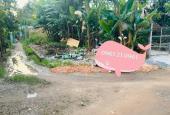 Bán đất tại đường Lò Lu, Xã Tương Bình Hiệp, Thủ Dầu Một, Bình Dương DT 150m2, giá 1.35 tỷ