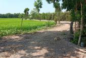 Bán đất gần đường Tỉnh Lộ 8, Xã Tân An Hội, Củ Chi, Hồ Chí Minh diện tích 10855m2 giá 1 triệu/m2