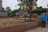 Bán nhanh 2 lô đất vuông vắn tại Vân Nội