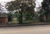 Bán lô đất đường nhựa 100m2 trong khu tái định cư Phú Cát - Hòa Lạc