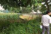 Bán lô đất 2 mặt đường nhựa 125m2 trục chính khu tái định cư Phú Cát - Hòa Lạc